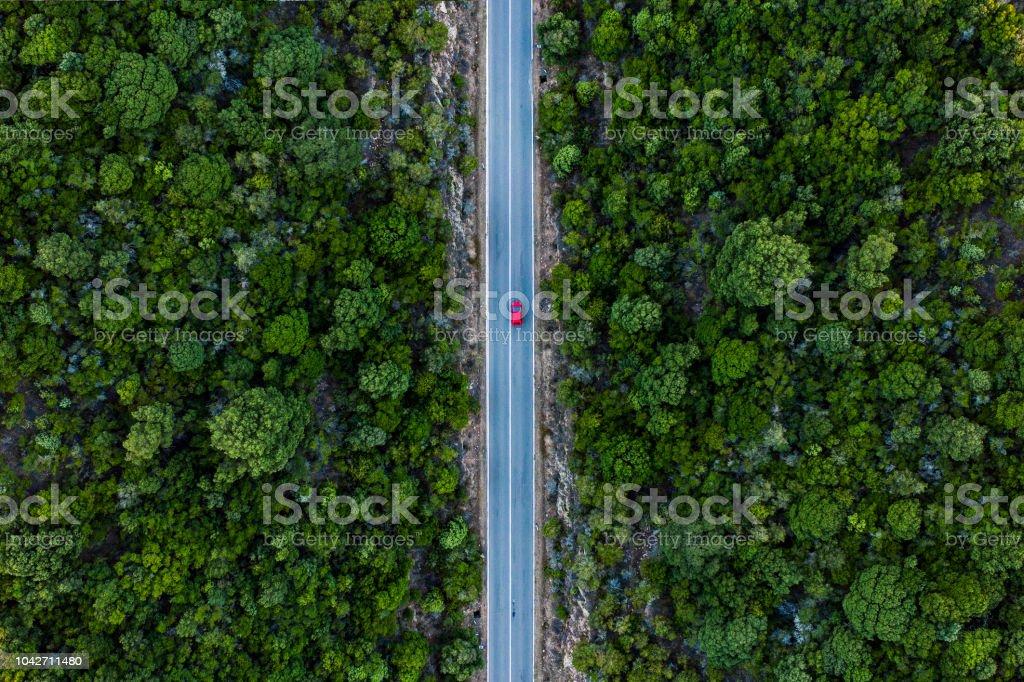 Luftaufnahme eines roten Autos, die entlang einer Straße, flankiert durch einen grünen Wald. – Foto