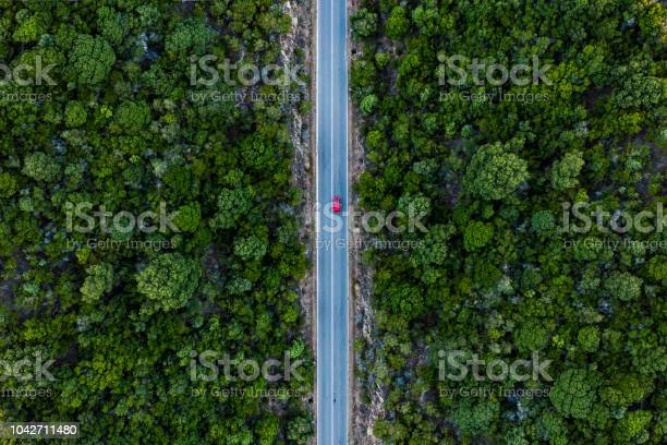 Photo of Aerial view of a red car that runs along a road flanked by a green forest.