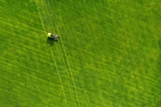 Aerial view of a ride on mower on a green field Directly above view of lawn mower on grass field green golf course stock pictures, royalty-free photos & images