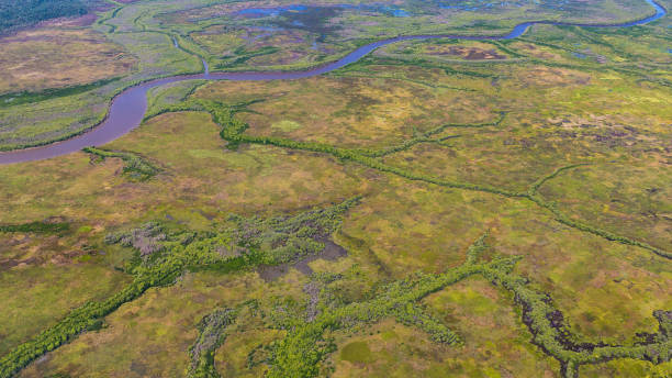 aerial view of a river system in the top end, nt, australia - janet k scott stock pictures, royalty-free photos & images