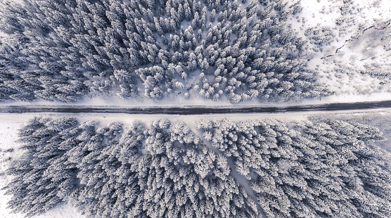 Aerial view of a road in winterland