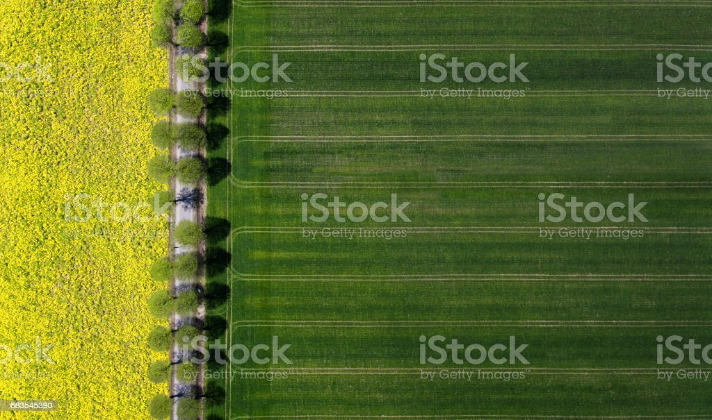 Aerial view of a road through the field stock photo