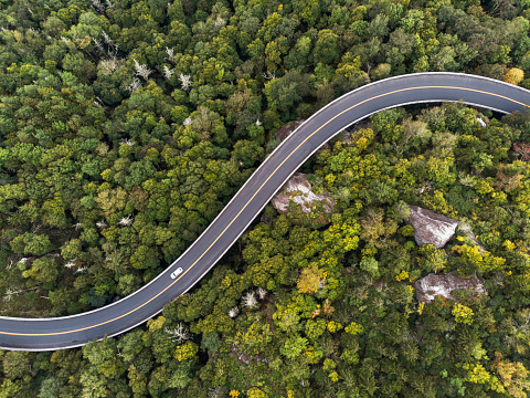 istock Aerial View of a road winding through a forest 1085457716