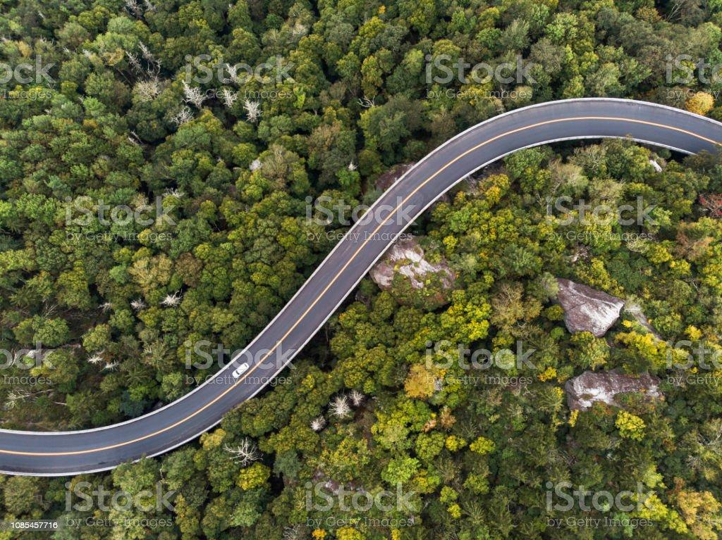Luftaufnahme einer Straße schlängelt sich durch einen Wald – Foto