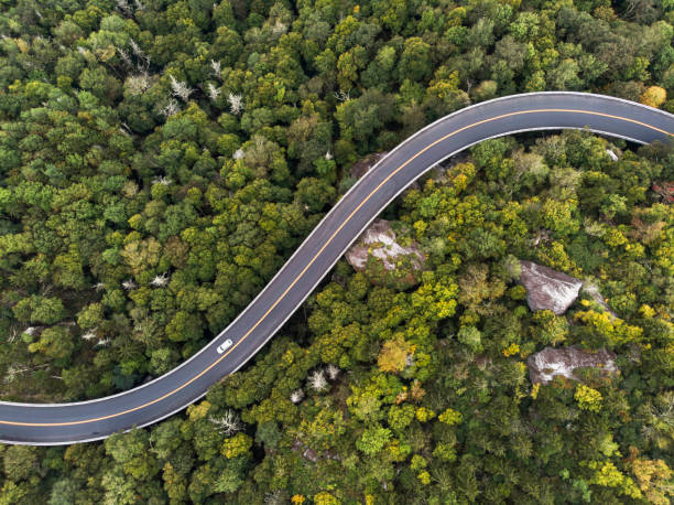aerial view of a road winding through a forest - estrada imagens e fotografias de stock