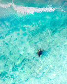 Aerial view of a sea turtle swimming through the blue ocean and wave in Australia. Tropical landscape with a turtle gently swimming