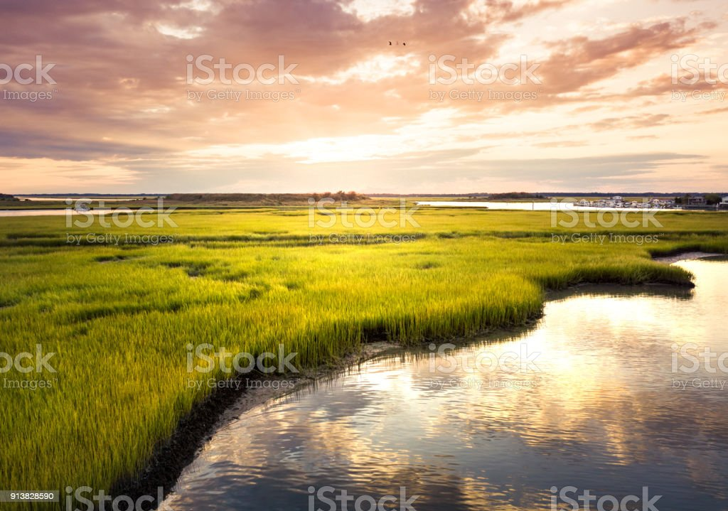 Aerial view of a swamp at sunrise stock photo