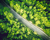 Aerial view from a drone of a two lane straight road in a beautiful green forest of pine trees in Europe. Horizontal image from RAW drone file shooted in Spain. Sharp focus.