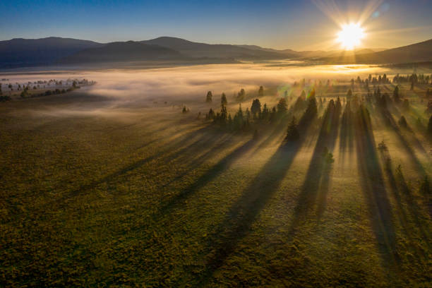 Aerial view of a valley in the morning fog, Carpathian Mountains stock photo
