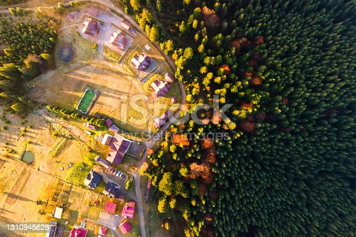 Aerial view of a village houses near dense green pine forest with canopies of spruce trees in autumn mountains.