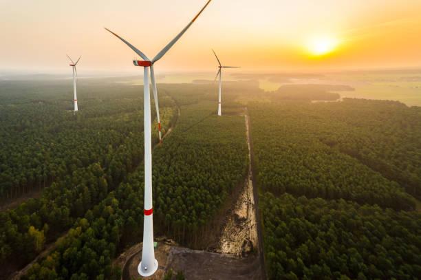 luftaufnahme eines windparks im wald bei sonnenaufgang - tim siegert stock-fotos und bilder