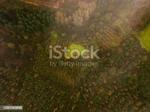 istock Aerial view of a woodland in winter, Roscommon, Ireland. 1090585698