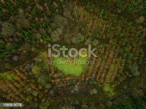 istock Aerial view of a woodland in winter, Roscommon, Ireland. 1090919278