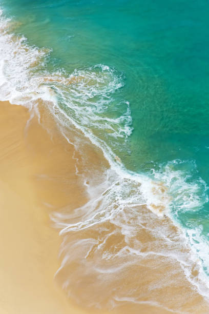Aerial view of abstract tropical beach stock photo