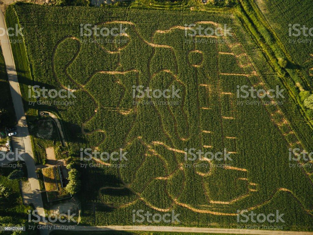 widok z lotu ptaka na pole rolnicze z krętą drogą, Europa - Zbiór zdjęć royalty-free (Cień)