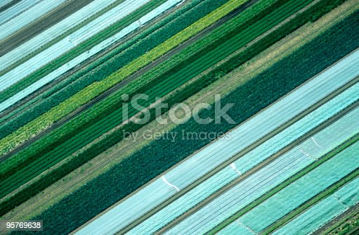 aerial view of agricultural landscape,