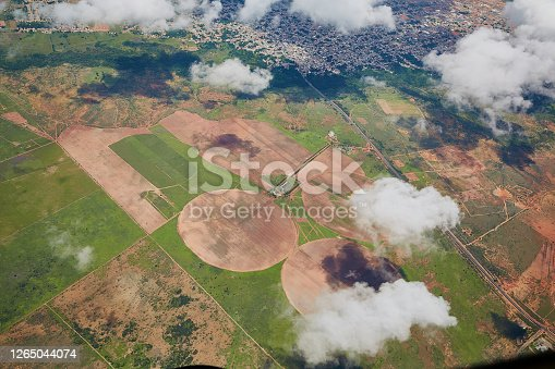 Aerial view of circular irrigation fields of sorghum production