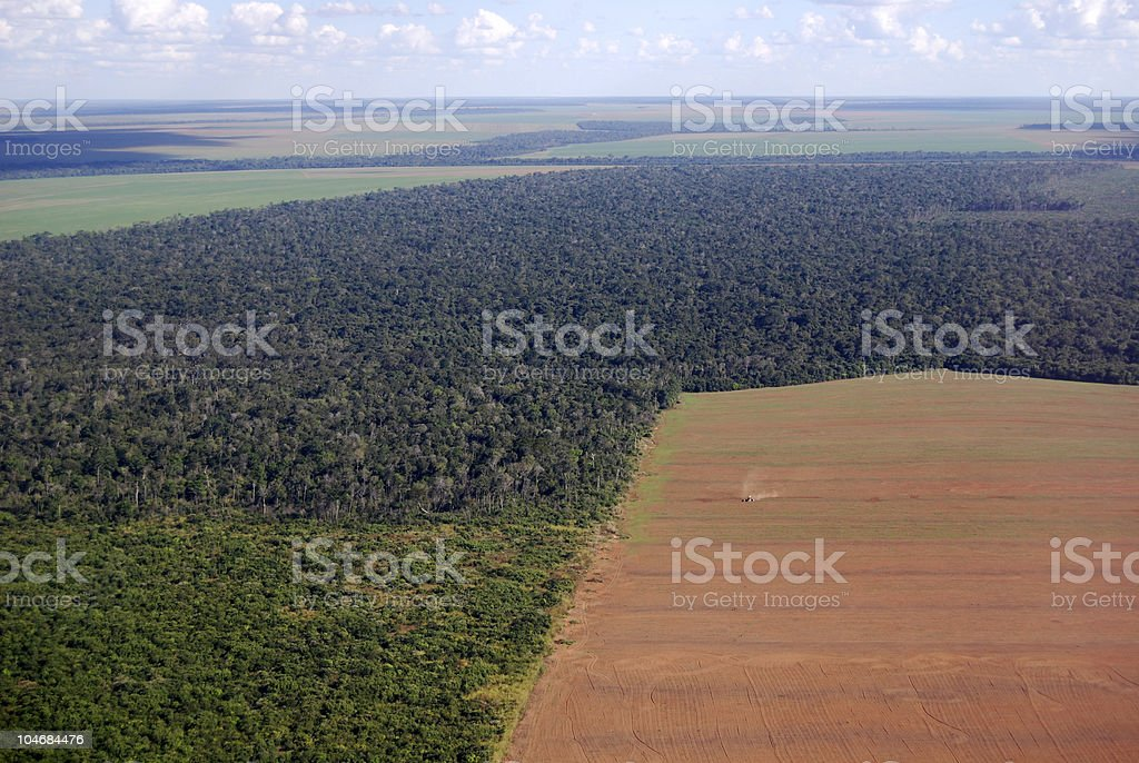 Aerial view of Amazon deforestation in Brazil stock photo