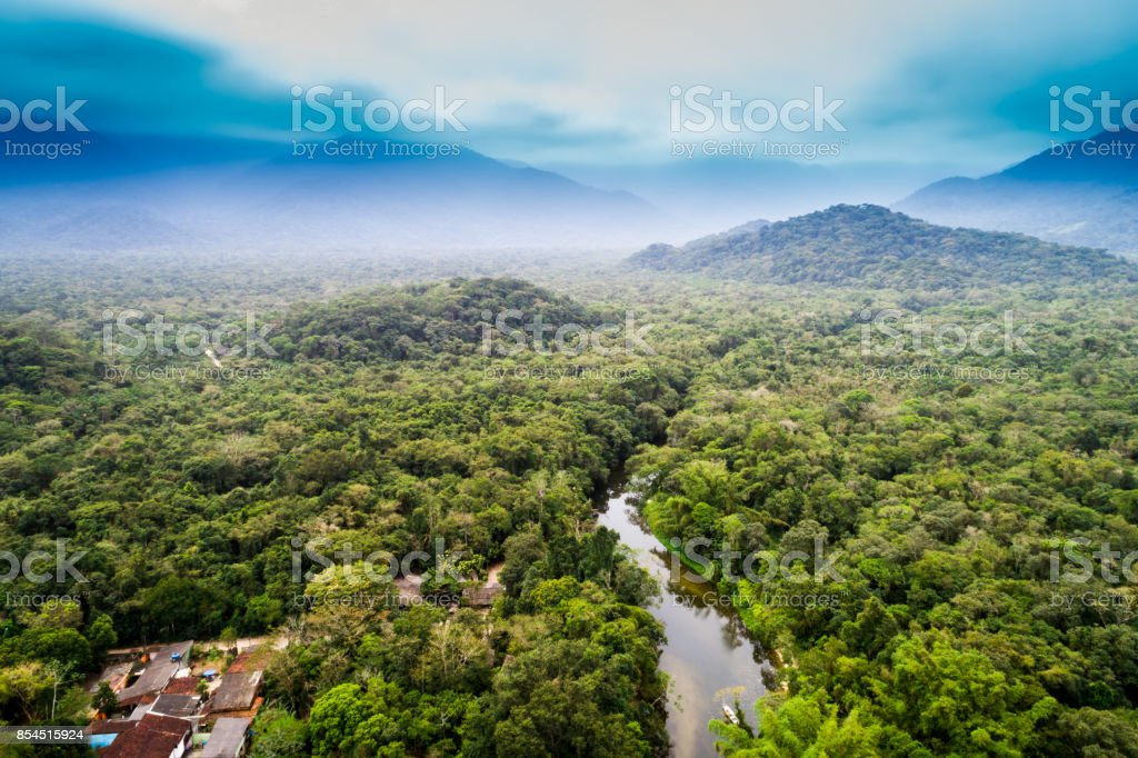 Aerial View of Amazon Rainforest, South America stock photo