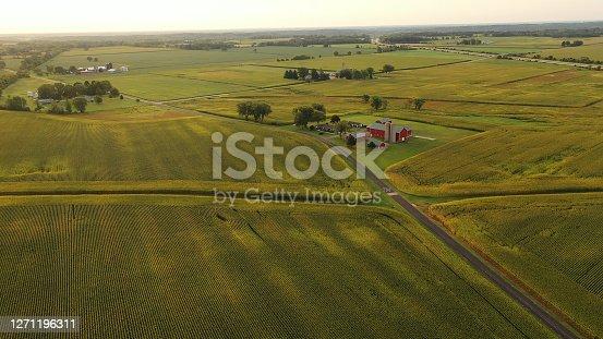 istock Aerial view of american Midwestern farm, corn field at harvesting season 1271196311