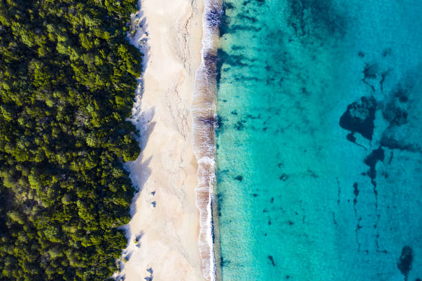"""aerial view of an amazing wild beach bathed by a transparent and turquoise sea. sardinia, italy.""""t - sardegna foto e immagini stock"""