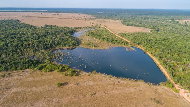 Luftaufnahme einer Amazonas-Lagune, die teilweise von Resten der ursprünglichen Regenwaldvegetation umgeben ist, natürliche Insel in einem landwirtschaftlichen Gebiet, Umweltschutz, Mato Grosso, Brasilien – Foto