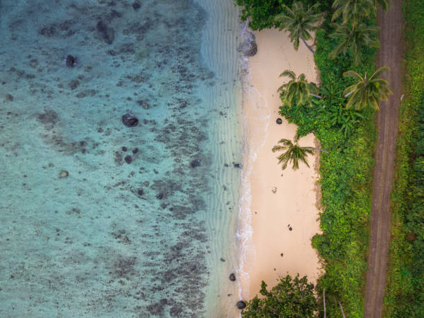 Aerial view of an empty tropical beach A top down view of a tropical beach in paradise on the island of Taveuni, Fiji south pacific ocean stock pictures, royalty-free photos & images