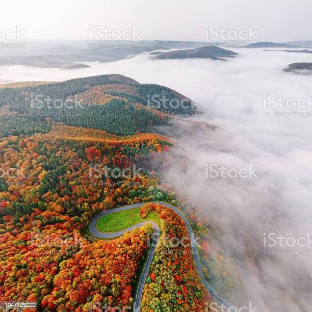 Photo of Aerial view of autumn forest road go down into morning fog. Mosele Valley, Germany.