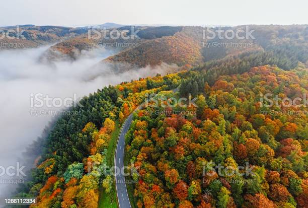Photo of Aerial view of autumn forest road in morning fog. Mosele Valley, Germany.