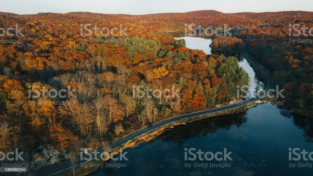 Aerial view of autumn leaves in New York Aerial view of autumn leaves in New York Above Stock Photo
