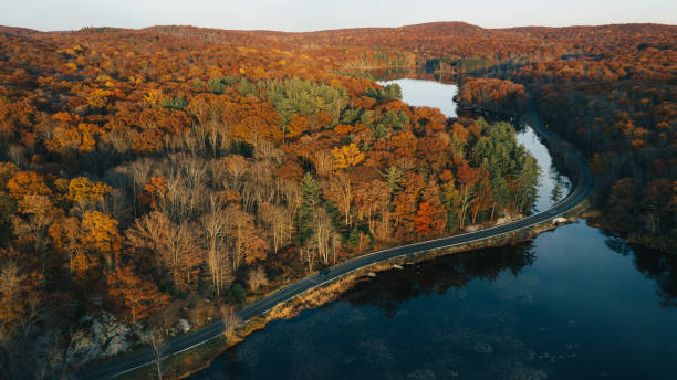 Aerial view of autumn leaves in New York Aerial view of autumn leaves in New York catskill mountains stock pictures, royalty-free photos & images