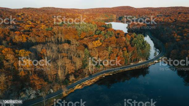 Aerial View Of Autumn Leaves In New York Stock Photo - Download Image Now