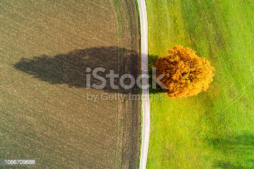 istock Aerial View of Autumn Tree and Country Road 1066709688