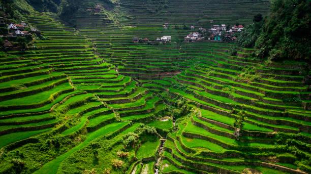 Luftaufnahme von Batad Rice Terraces, Ifugao Province, Luzon Island, Philippinen – Foto