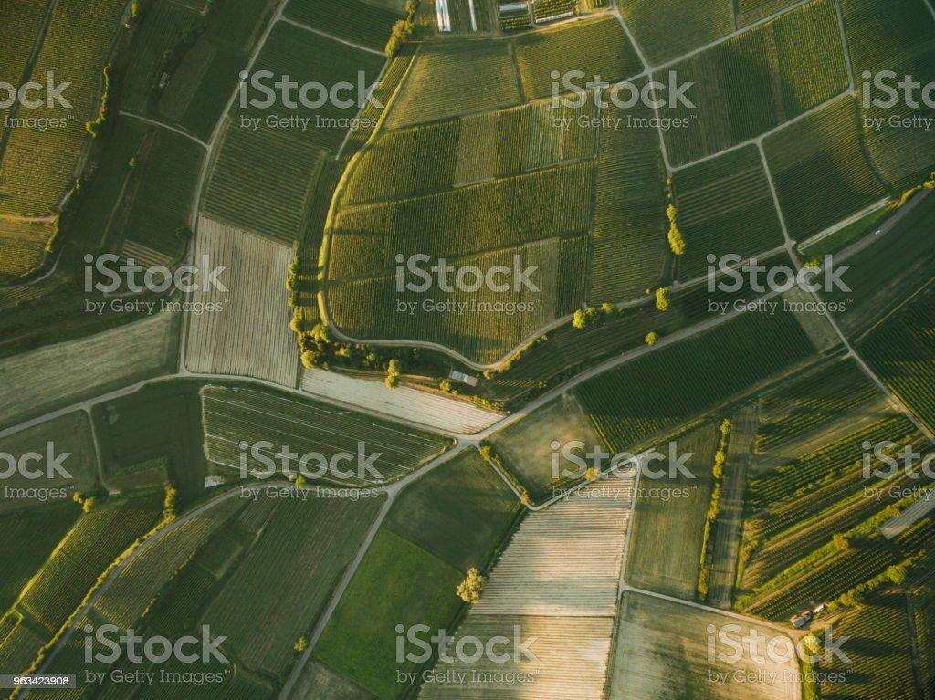 vue aérienne de champs agro beau soir, europe - Photo de Agriculture libre de droits