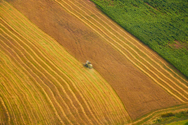 Aerial view of beautiful colorful field with harvesting machinery stock photo