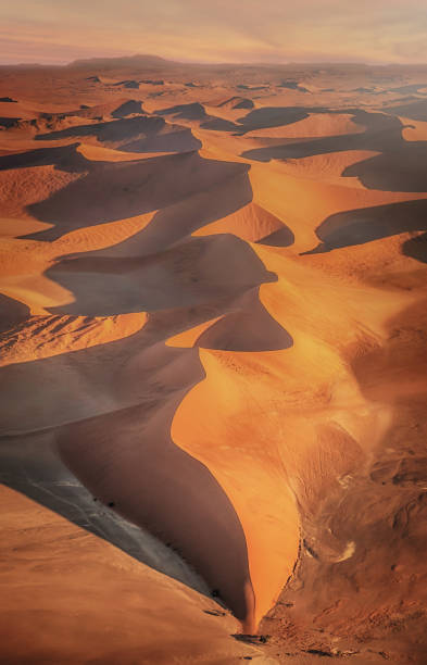 aerial view of beautiful large red sand dunes of the namib desert, with curves, lines, shadows, and textures in golden evening light in sossusvlei, namib-naukluft national park, namibia. - sand dune stock photos and pictures