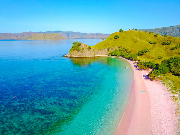 aerial view of beautiful pink beach at flores island - bahamas foto e immagini stock