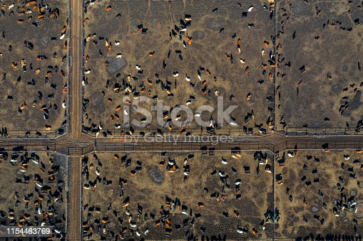 Aerial view of a large beef cattle feed lot in Texas, USA.