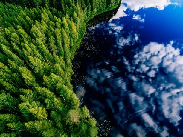 공중 보기 푸른 호수와 푸른 숲의 맑은 여름 날에 핀란드에서. - 핀란드 뉴스 사진 이미지