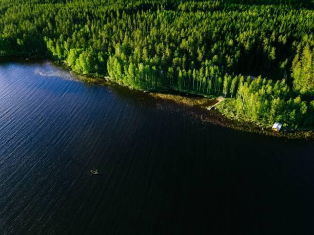 utsikt över blå sjön med fiskebåt och gröna träslag en solig sommardag i finland. - pine forest sweden bildbanksfoton och bilder