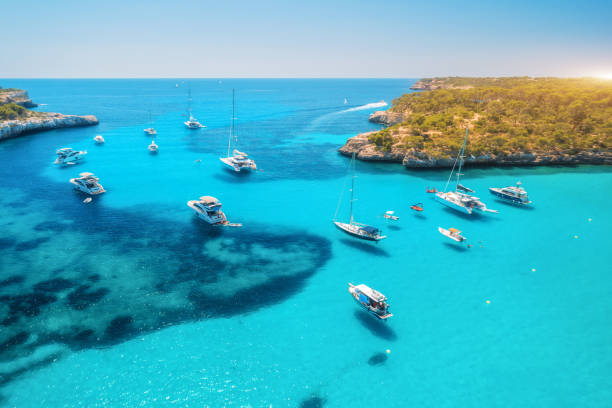 Aerial view of boats and luxury yachts in transparent sea at sunny day in summer in Mallorca, Spain. Colorful landscape with bay, azure water, green trees, blue sky. Balearic islands. Top view. Travel stock photo
