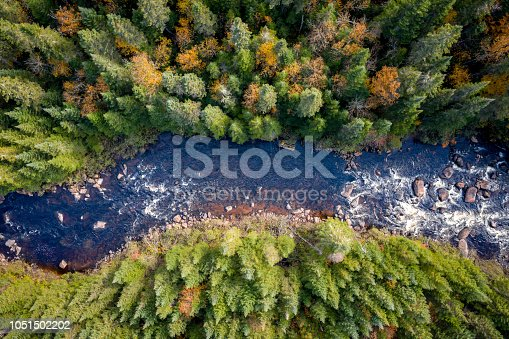 istock Aerial View of Boreal Forest Nature in Autumn Season, Quebec, Canada 1051502202