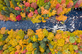 Aerial View of Boreal Forest Nature and River in Autumn Season, Quebec, Canada