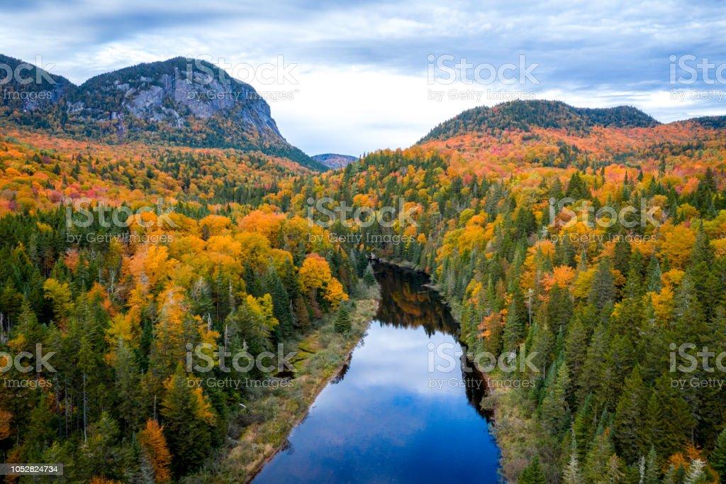 Luftaufnahme Des Borealen Wald Natur Im Herbst Saison Quebec Kanada