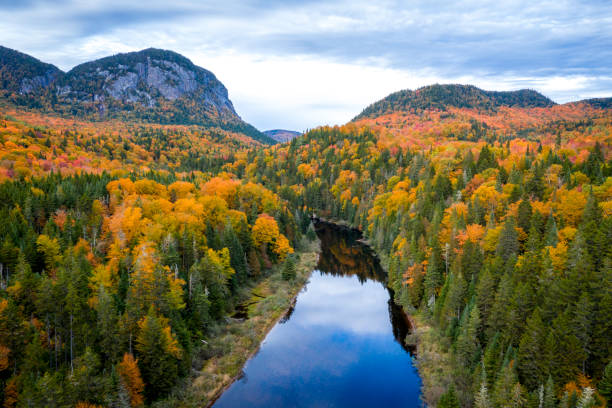 Aerial View of Boreal Forest Nature in Autumn Season, Quebec, Canada Aerial View of Boreal Forest Nature and River in Autumn Season, Quebec, Canada taiga stock pictures, royalty-free photos & images