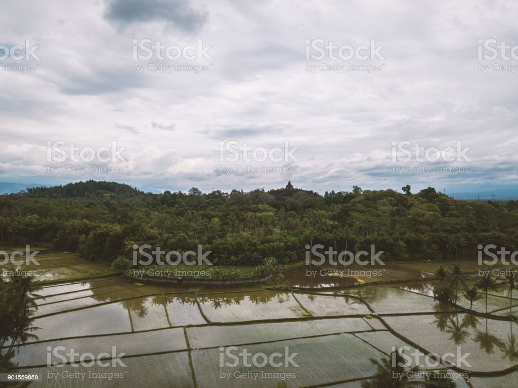 Aerial view of Borobudur temple and rice field in Java, Indonesia stock photo