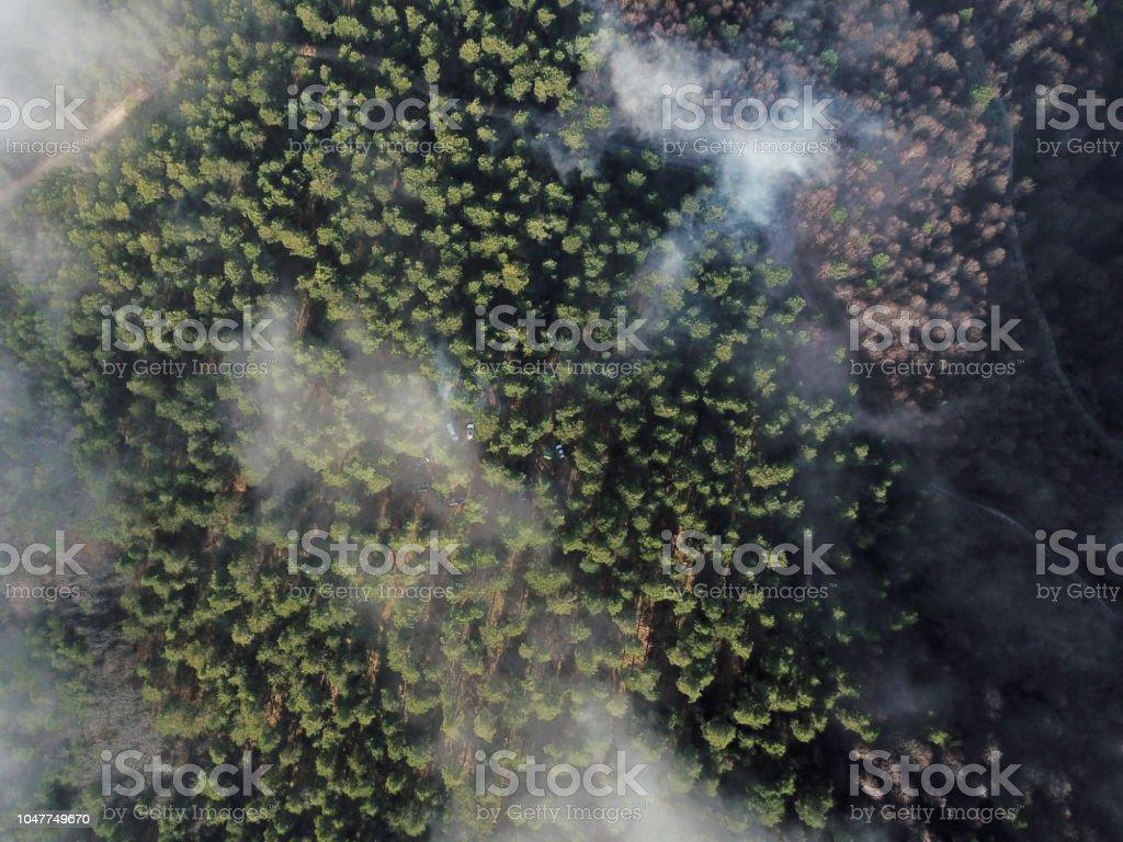 Ormanda kamp alanının havadan görünümü stok fotoğrafı