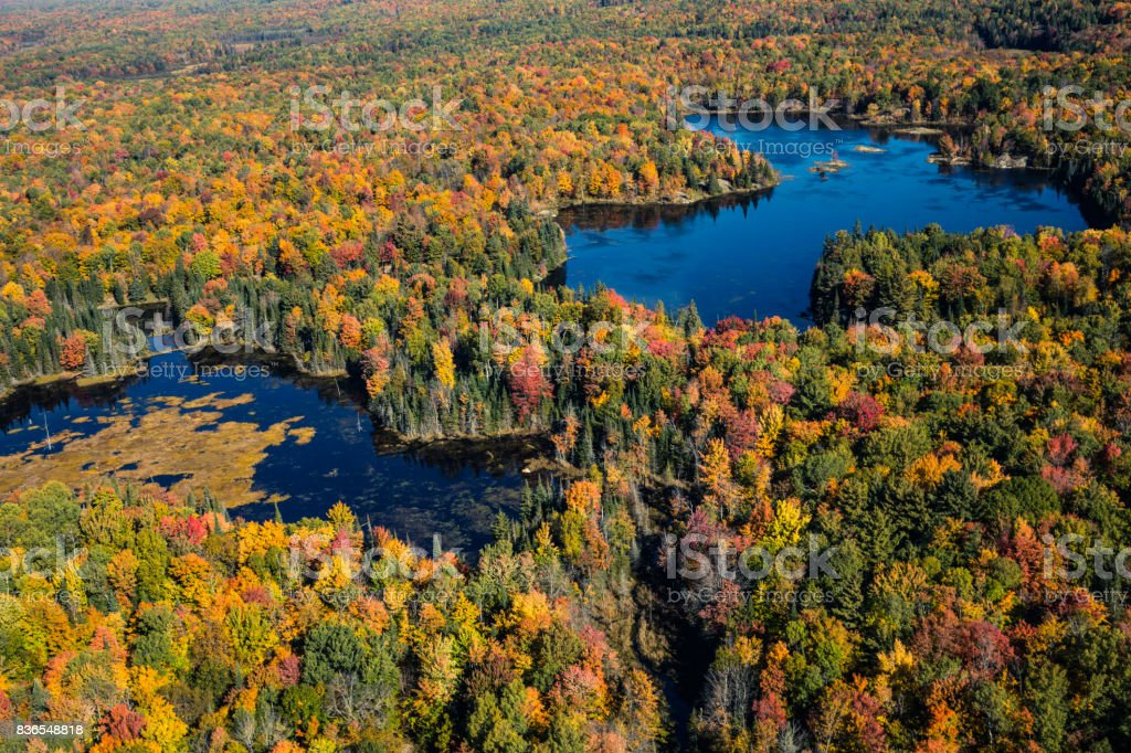 Aerial view of Canadian national park in autumn stock photo