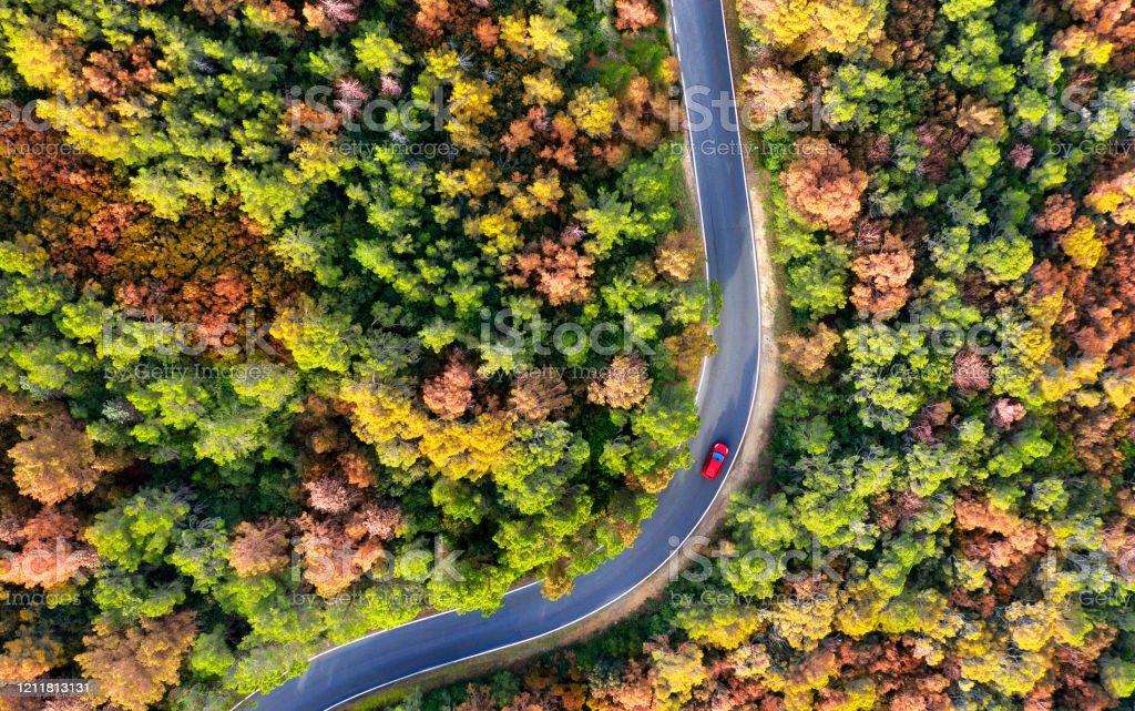 Luftaufnahme des Autos auf einer kurvenreichen Straße durch den Wald. - Lizenzfrei Ansicht von oben Stock-Foto